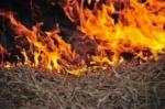 «Արամի լեռ» կոչվող տարածքում այրվել է 1.5 հա խոտածածկ տարածք