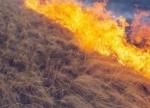 Այգեհովիտ գյուղում այրվել է անտառածածկ տարածք