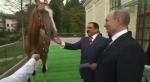 Պուտինը նժույգ է նվիրել Բահրեյնի թագավորին (լուսանկար, տեսանյութ)