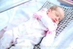 Հունվարի 29-ից փետրվարի 4 -ը մայրաքաղաքում ծնվել է 361 երեխա