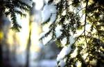 Օդի ջերմաստիճանն աստիճանաբար կբարձրանա