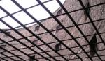 Մամուլում տեղ գտած ահազանգերի հիման վրա դիտորդներն այցելել են «Նուբարաշեն» ՔԿՀ
