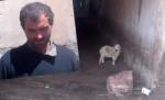 Գողացել էր 38 գառ, 13 ոչխար և 1 այծ (տեսանյութ)
