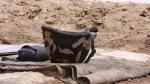 От пули противника погиб армянский солдат
