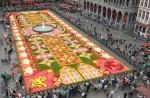 20 տարի է՝ Բրյուսելի հրապարակը զարդարում են բնական ծաղիկների գորգով (ֆոտոշարք)