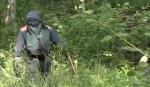 Դեռահասը ծեծել է անտառում 10–ամյա տղային բռնաբարած բարձրդասարանցիներին