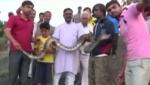 Հնդկաստանում պիթոնը կծել է լուսանկարվելու սիրահարին (տեսանյութ)
