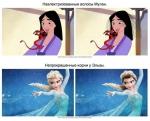 Ինչ կլիներ, եթե «Դիսնեյի» հերոսուհիներն իսկական մազեր ունենային (ֆոտոշարք)