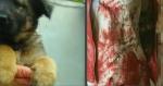 Սպանդագործ աղջիկը քննիչներին պատմել է անդրշիրիմյան ձայների մասին (տեսանյութ)