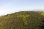 Իռլանդիայում հայտնաբերվել է ծառերից բաղկացած կելտական խաչ (լուսանկար)