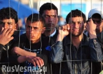 Мигранты столкнули немку с лестницы (видео)