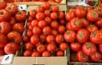Թուրքական գյուղատնտեսական ապրանքները նվազագույնի են հասցրել տեղական արտադրանքի պահանջարկը