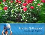 Երևանը կանաչապատելու համար «Փյունիկը» քաղաքապետարանից մոտ 325 հազ դոլար է ստացել (տեսանյութ)