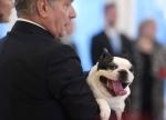 Ֆինլանդիայի նախագահի ժպտերես շնիկը գրավել է համացանցը (լուսանկարներ)