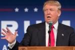 Трамп примет участие в саммите НАТО 25 мая