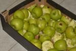 Պարզվել է՝ ադրբեջանական խնձորները նախատեսված ցուցանիշներից շեղումներ չունեն