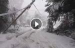 Сильный снегопад парализовал аргентинский город Рио-Негро (видео)