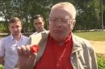 Վլադիմիր Ժիրինովսկին գնացել է ելակ հավաքելու