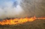 Արզնի թիվ 4 առողջարանի դիմաց այրվել է 2000 քմ խոտածածկ տարածք