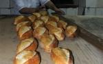 Թուրքիայում օրական թափոնի է վերածվում 1.223 տոննա հաց