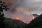 Բորժոմի անտառներում հրդեհ է բռնկվել․ այն չի հաջողվում մարել