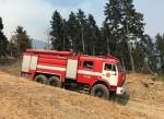 Գորիում նույնպես հրդեհ է բռնկվել․ անտառն այրվում է