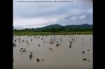 Ռոհինգիայի ճգնաժամի պայմաններում մարդիկ հատում են գետը
