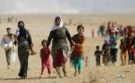 Թուրքիայում ԻՊ-ի կողմից առևանգած եզդի երեխաներ են գտնվել