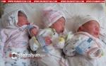 «Արմենիա» ԲԿ-ի ծննդատանը լույս աշխարհ է եկել եռյակ՝ 2 տղա, 1 աղջիկ․ ընտանիքը սոցիալապես անապահով է
