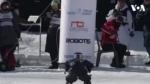 Օլիմպիական խաղերին մասնակցում են ոչ միայն մարդիկ, այլ նաև ռոբոտները