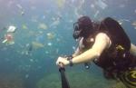 Ձկների փոխարեն աղբ պլաստիկից․ ինչպես ենք ապականում բնությունը