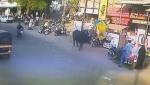 Հնդկաստանում ցուլը հանկարծակի հարձակվել է անցորդ կնոջ վրա
