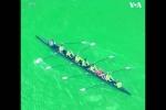 Չիկագոյում գետը կանաչ են ներկել