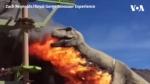 Կոլորադոյի հսկա դինոզավրն այրվել է