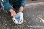 Զովունիում գործող ավտոլվացման կետում նկատվել է օձ