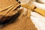 Նախնական պայմանավորվածությամբ՝ վրացական երկաթուղին Հայաստան ներկրվող ցորենի համար կկիրառի զեղչային համակարգ