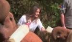 Քենիայում փղի ձագը հրել է Մելանիա Թրամփին