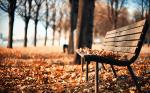 Օդի ջերմաստիճանը նոյեմբերի 18-ի գիշերը կնվազի 2-3 աստիճանով