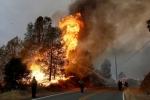 Կալիֆոռնիայի անտառային հրդեհների զոհերի թվում երկու հայ կա