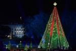 Դոնալդ և Մելանյա Թրամփերն Սպիտակ տան մոտ վառել են ԱՄՆ-ի Սուրբծննդյան գլխավոր տոնածառի լույսերը