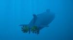 Опубликованы кадры испытаний морского беспилотника «Посейдон»