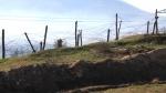 Հրաձգություն Ադրբեջան-Իրան սահմանին. կա զոհ և վիրավոր