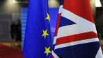 Совет ЕС согласовал ряд мер на случай «жесткого» «Brexit»