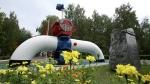 Польша остановила транзит российской нефти по нефтепроводу «Дружба»