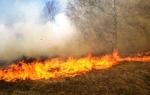 Չոբանքարայի խճուղում մոտ 4 հա խոստածածկույթ է այրվել