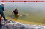 Արհեստական լճից ջրասուզակը դուրս է բերել 18-ամյա տղայի դի