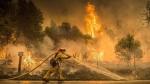 Մեղրի քաղաքում մոտ 10 հա խոտածածկույթ է այրվել