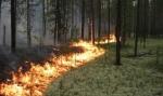 Խոտածածկ տարածքներում հրդեհներ են բռնկվել