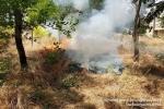 Մոտ 16.92 հա խոտածածկ տարածքներում հրդեհներ են բռնկվել