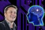 Илон Маск представил чип для чтения мыслей (видео)